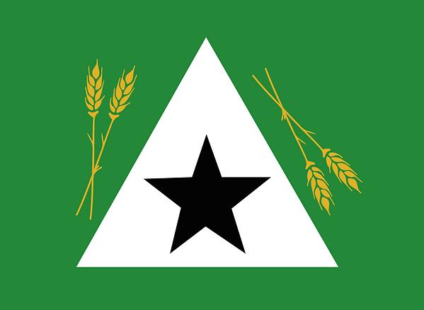 bandeira-municipio.png