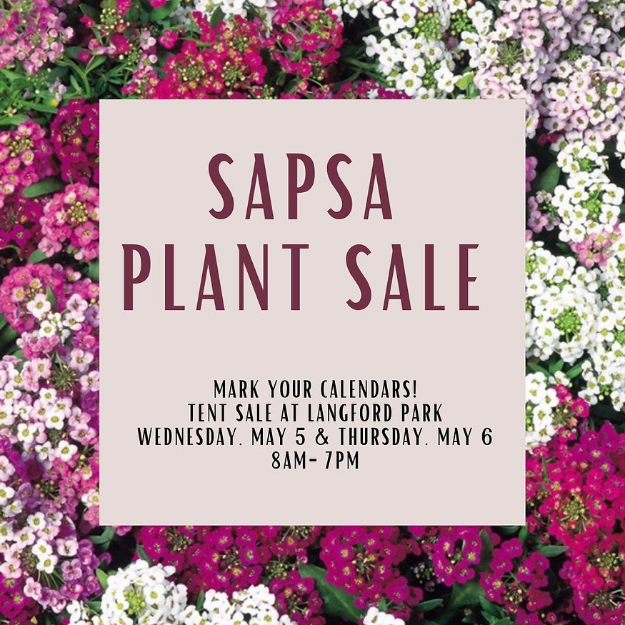 Sapsa Plant salE (1).jpg