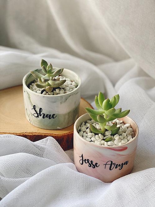 Marble Succulent Pot (M)