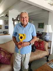 ted ward sunflower.jpg