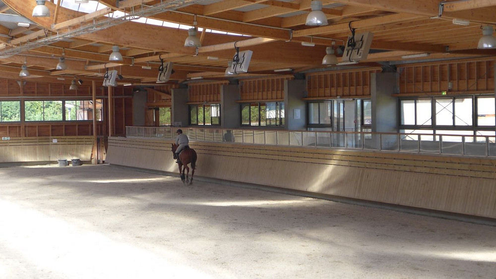 Deauville Polo internacional cavalo - 4