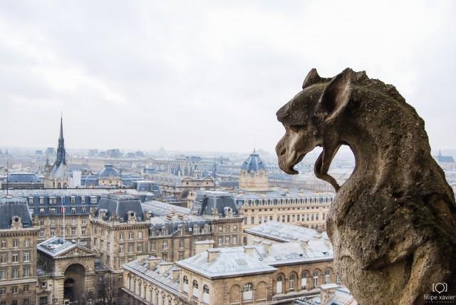 Notre-Dame_Paris vista do alto 3