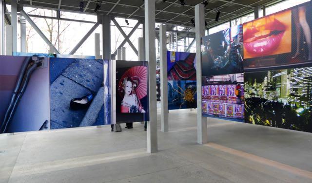 Daido Moriyama_Fondation Cartier_Paris_dicas de paris_ A Viagem Certa _.jpg - 2