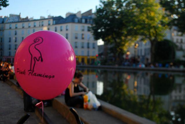 pink flamingo 2