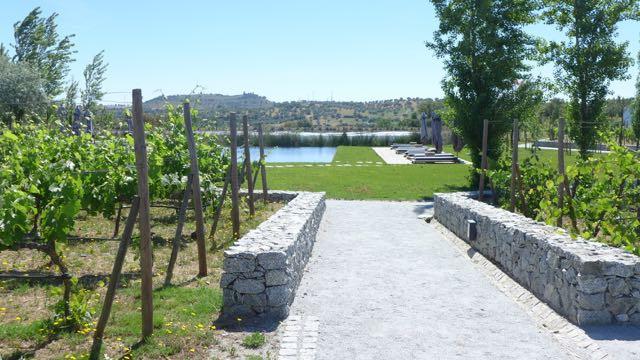 Land Vineyards_A Viagem Certa - 12