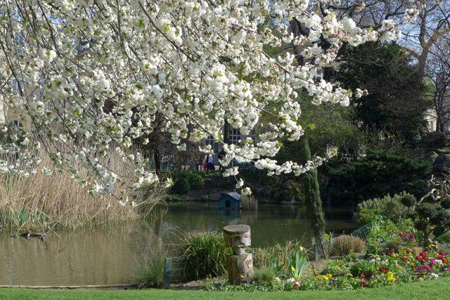 primavera em Paris 8