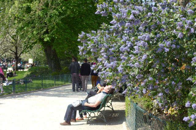 primavera em paris 1