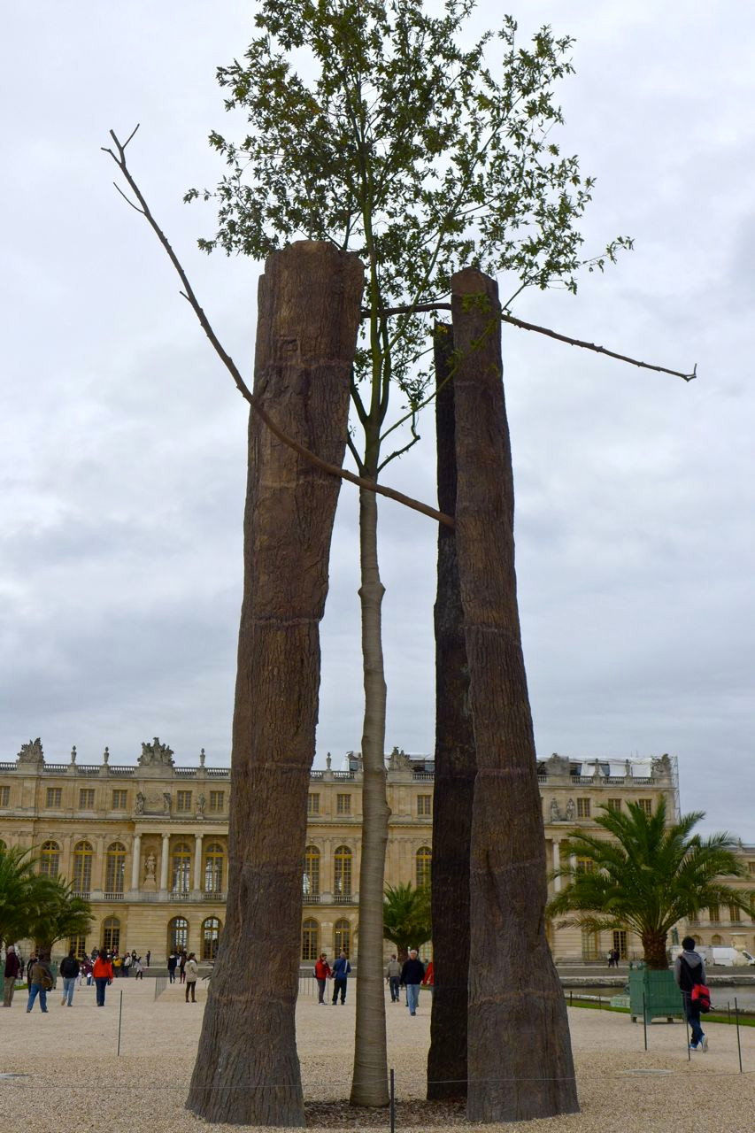 Versailles_Penone