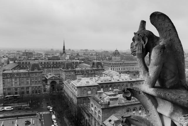 Notre-Dame_Paris vista do alto
