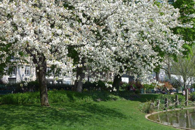 primavera em paris 2