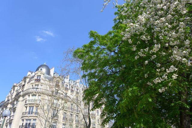Primavera Paris 9