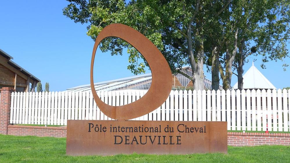 Deauville Polo internacional cavalo - 14