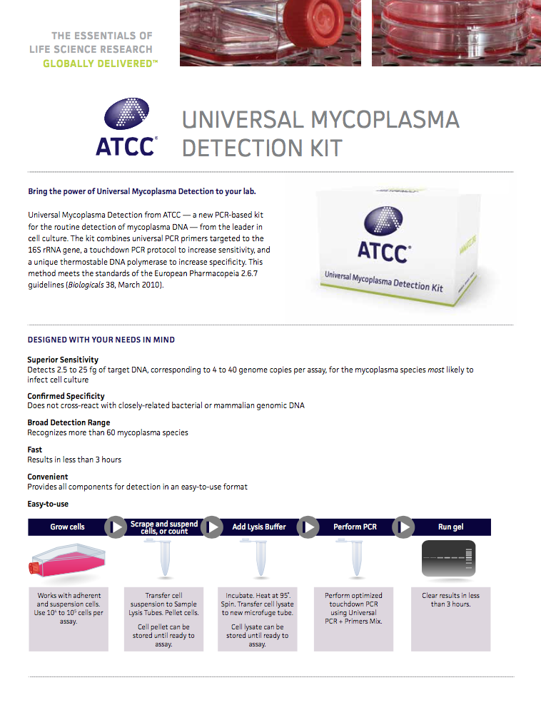 mycoplasma detection kit