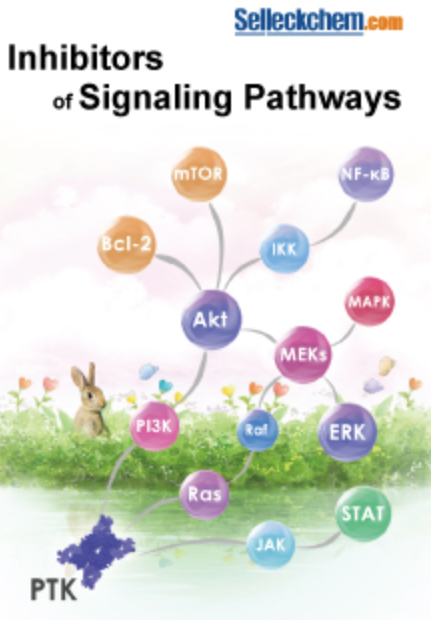 Inhibitors of Signalling Pathways