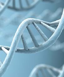 banner DNA pic 1700x2044px_RGB_Novagentek.jpg
