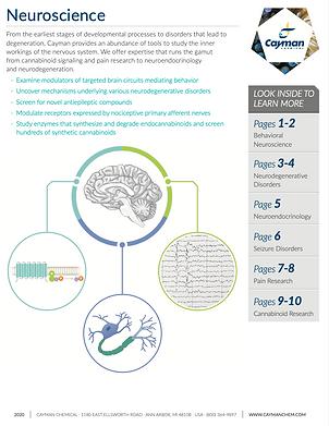 Neuroscience Cayman.png