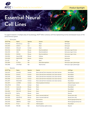 ATCC Neural Cell Lines.png