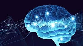 neuroscience image.jpg