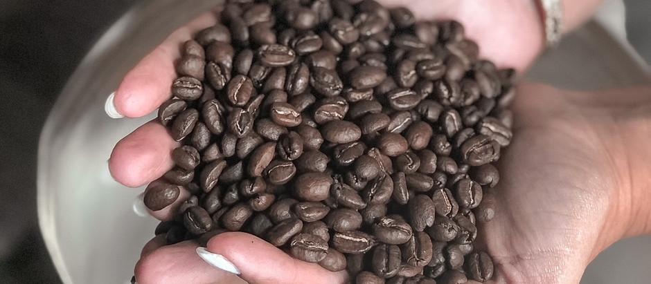 משפחה של קפה - קפה רות
