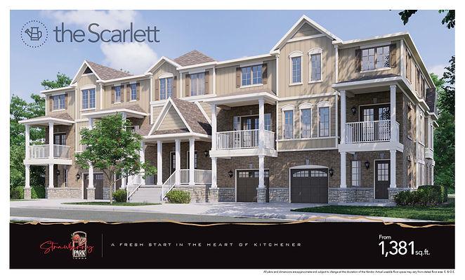 SP-SCARLETT 1.jpg
