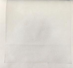 Voil liso branco 01.JPG