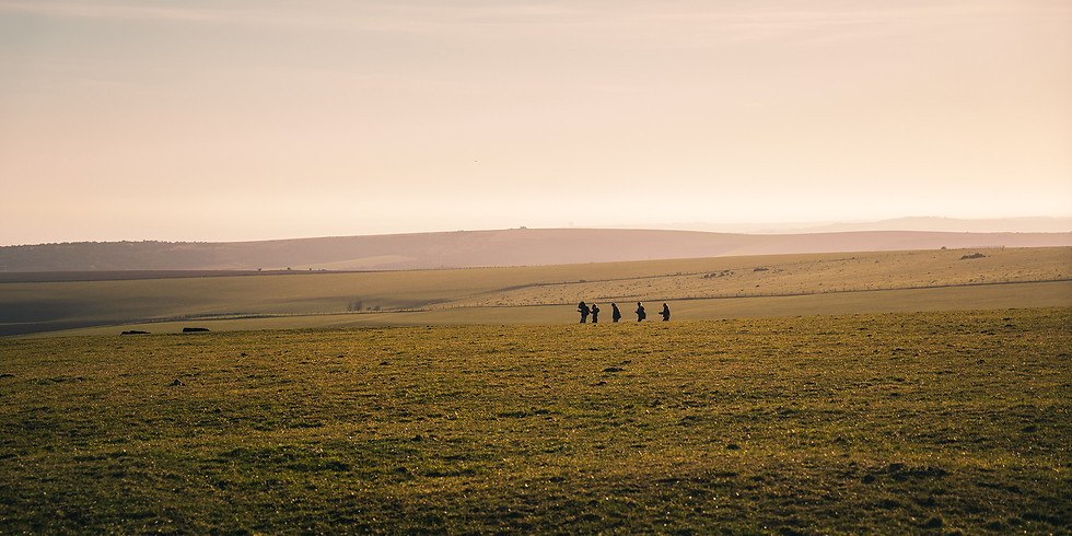 Walking the Covid Camino - Session 2