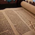 Torahweb.jpg