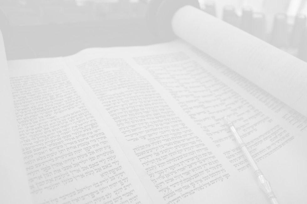 Torah%201_edited.jpg