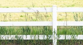 White Fence, Zaunbau, Holzzaun, Stabmattenzaun