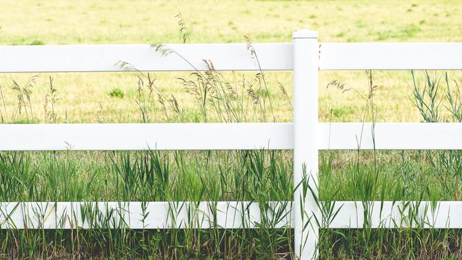 Fence talk.