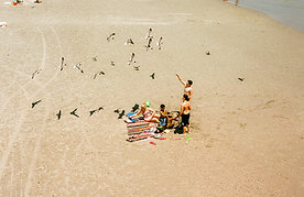 WILL CORNFIELD - BEACH FRIENDS
