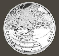 Otter coin .jpg
