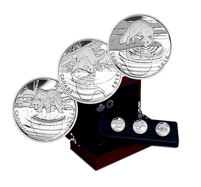 Reflections series  of 3 coins .png