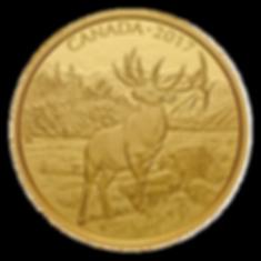 Gold Elk .png