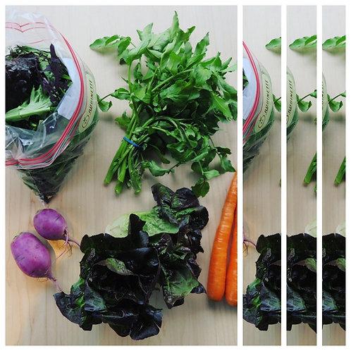 The Salad Box: 4 weeks