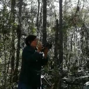VIDEO-2019-08-13-17-31-12.mp4