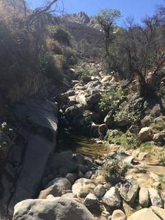 Camino a Aranzazu 15 de feb 9.JPG
