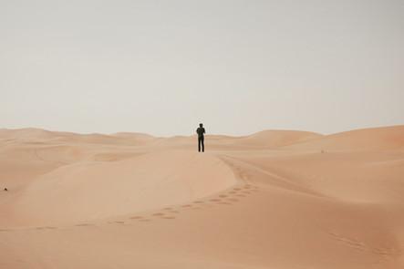 Liwa Dunes 2017