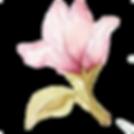 Logoblume6.png