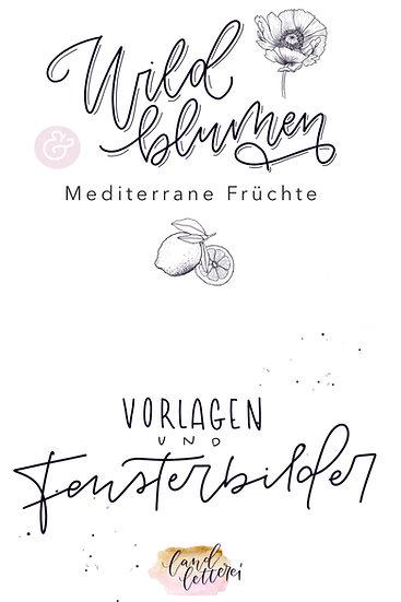 Wildblumen und Mediterrane Früchte Vorlagen und Fensterbilder