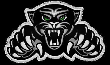 Jaguar Logo copy.png