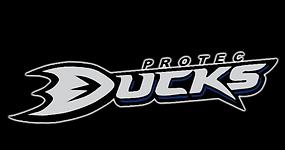 Protec Ducks