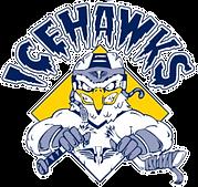 Ice Hawks Logo copy.PNG