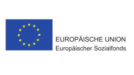 europaeische_union_img_w272_h153.png