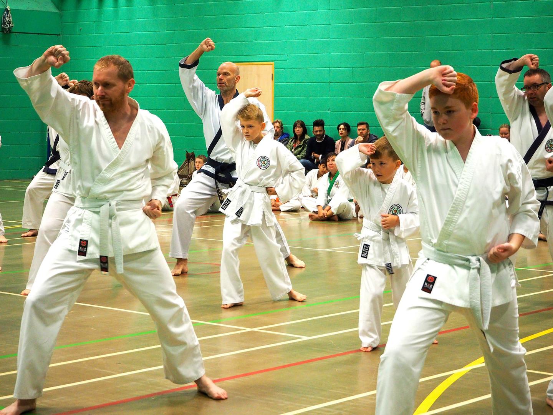 UK Soo Bahk Do Grading, UK World Moo Duk Kwan
