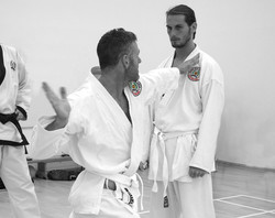 Rainford Karate UK Soo Bahk Do