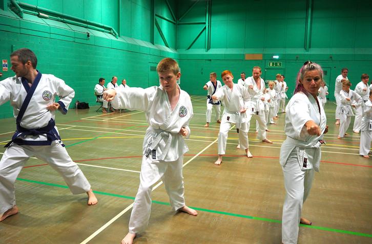 UK World Moo Duk Kwan, UK Soo Bahk Do Grading