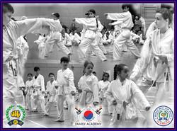 UK Soo Bahk Do Academy Kids