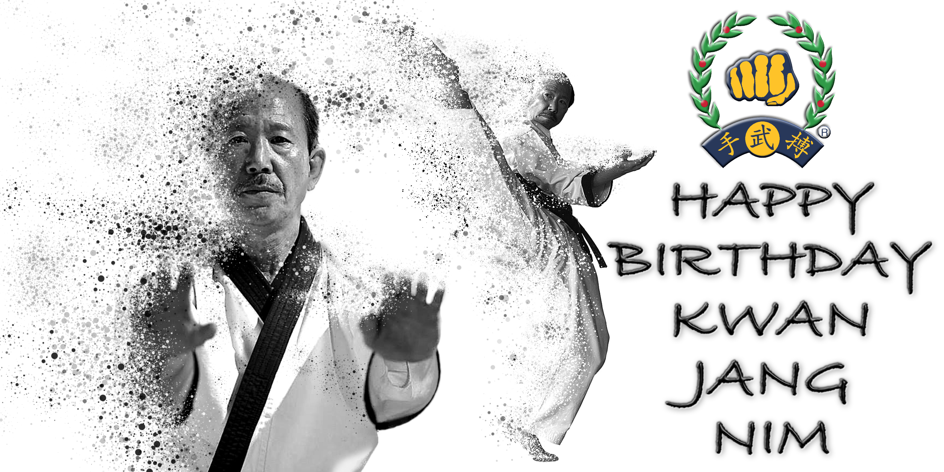 UK Soo Bahk Do  Kwan Jang Nim Birthd