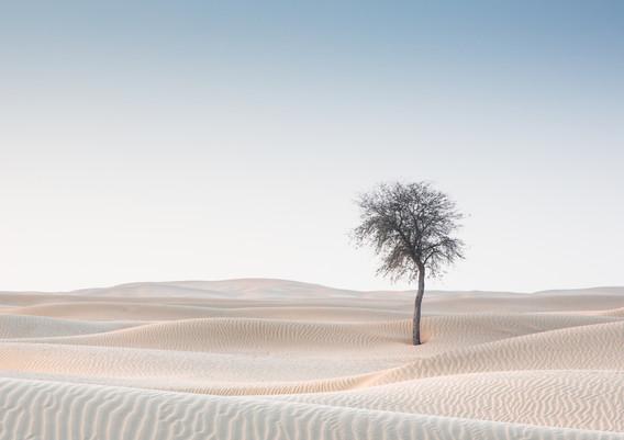 Dubai desert nieuw-2.jpg